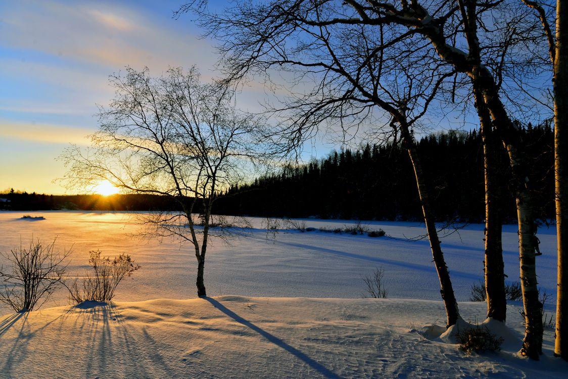 Зимнее снежное поле · бесплатная заставка