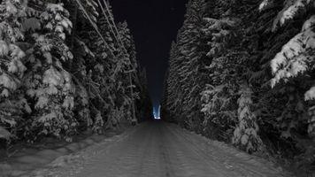 Бесплатные фото зимняя дорога,сугробы,лес,ночь,деревья в снегу,холод,мороз