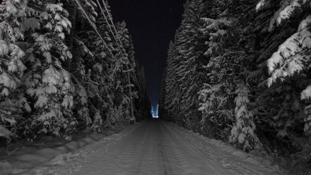 Бесплатные фото зимняя дорога,сугробы,лес,ночь,деревья в снегу,холод,мороз,темный лес