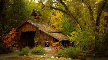 Фото бесплатно туман, лес, дом