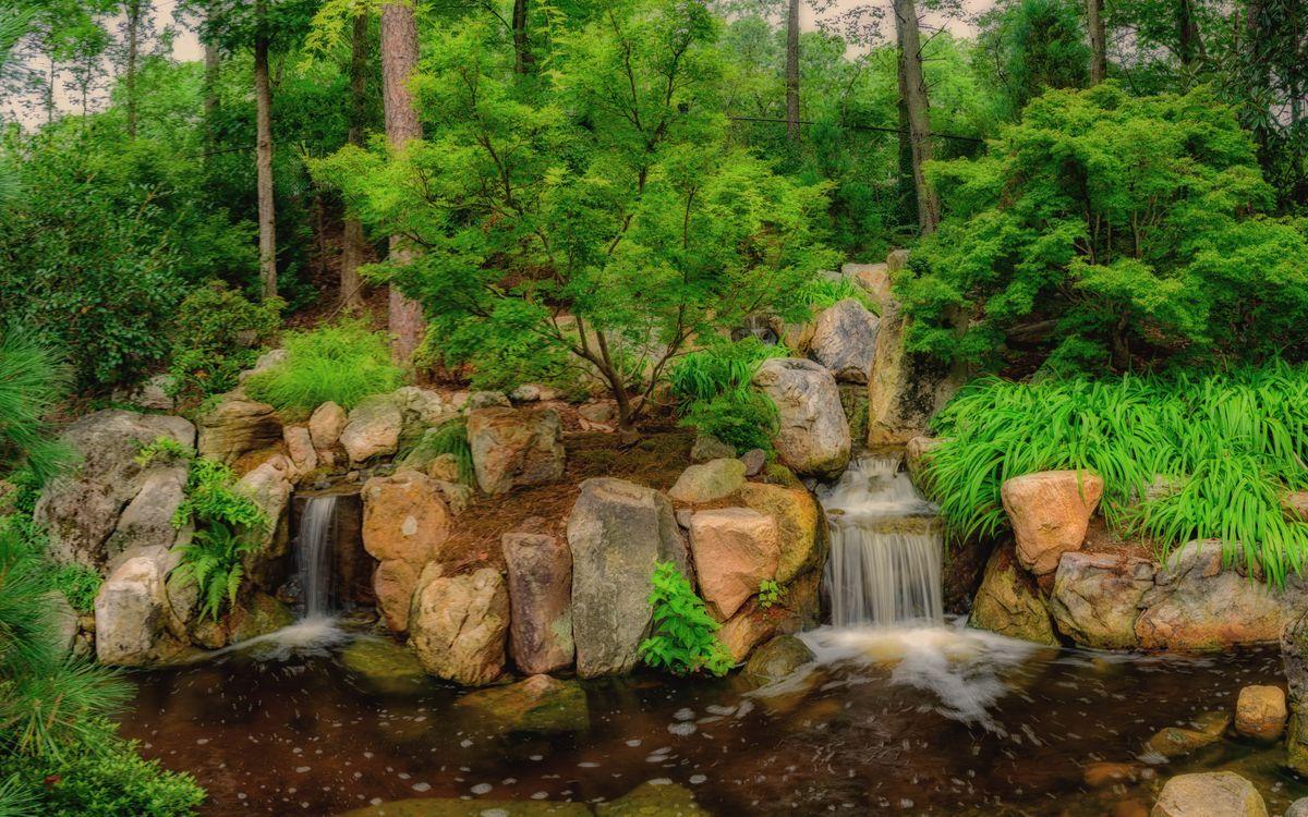Фото бесплатно Парк, лес, камни - на рабочий стол