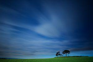 Фото бесплатно поле, небо, деревья