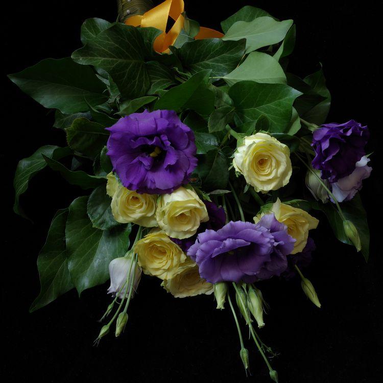 Желтые цветы · бесплатное фото