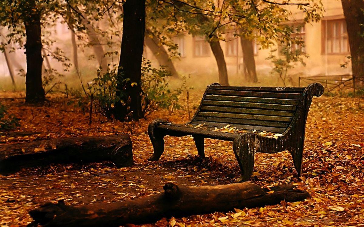 Фото бесплатно осень, скамейка, листопад, деревья, парк, дом, старый дом, стул, пейзаж, листья, настроения, места, природа - скачать на рабочий стол