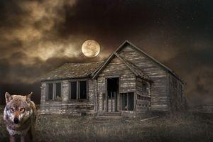 Бесплатные фото ночь,луна,небо,волк,дом,руины,пейзаж