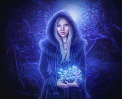 Бесплатные фото портретное фото,девушка с цветами,зима,лес,лунный свет,подснежники,фантазия