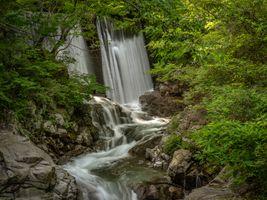 Фото бесплатно ручей, деревья, водопад