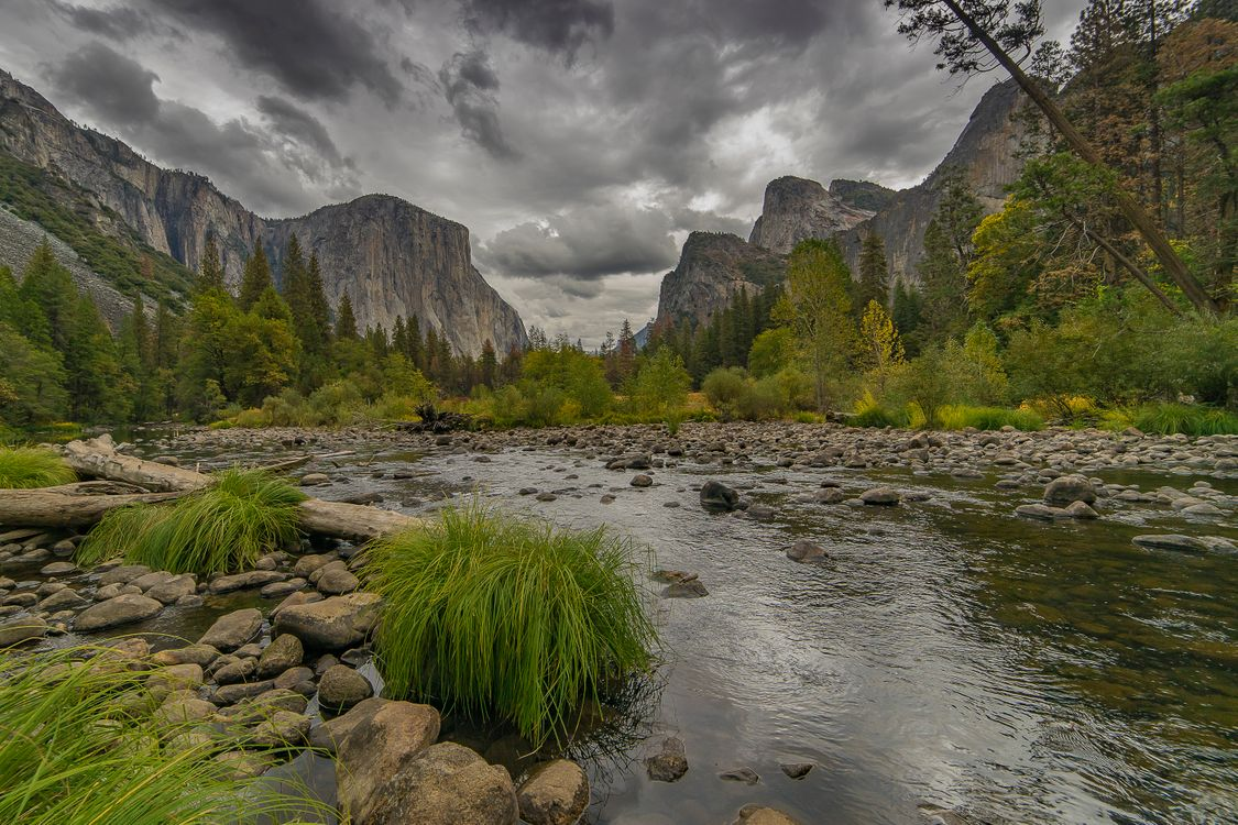 Small river · free photo