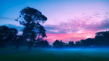 Photo free dusk, fog, landscape