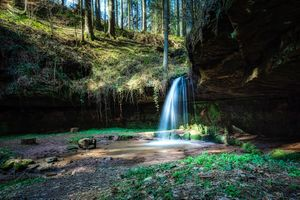 Фото бесплатно лес, водопад, лето