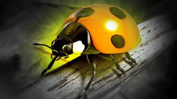 Photo free mascot, graphics, beetle