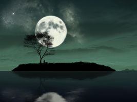 The picture big moon · free photo