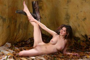 Бесплатные фото Anita C,Danica,Luisa,Anita Silver,голая девушка,обнаженная девушка,позы