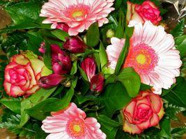 Фото бесплатно цветы, цветочные, букет