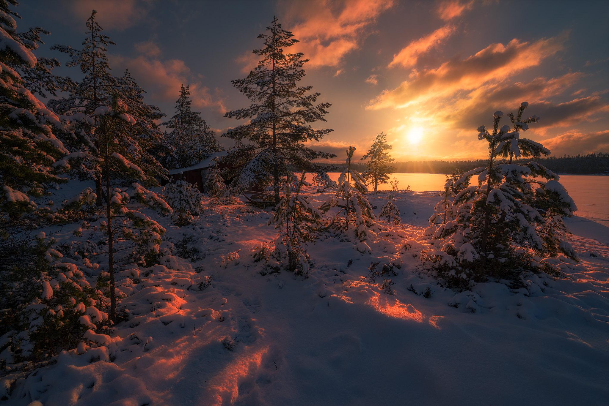 Фото зимний рассвет добраться