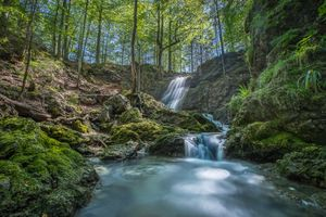 Фото бесплатно водопад, лес, речка