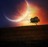 Бесплатные фото закат,поле,планета,дерево,art