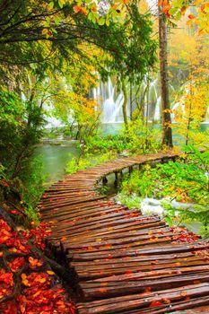 Фото бесплатно Плитвицкие озера, Хорватия, дорожки