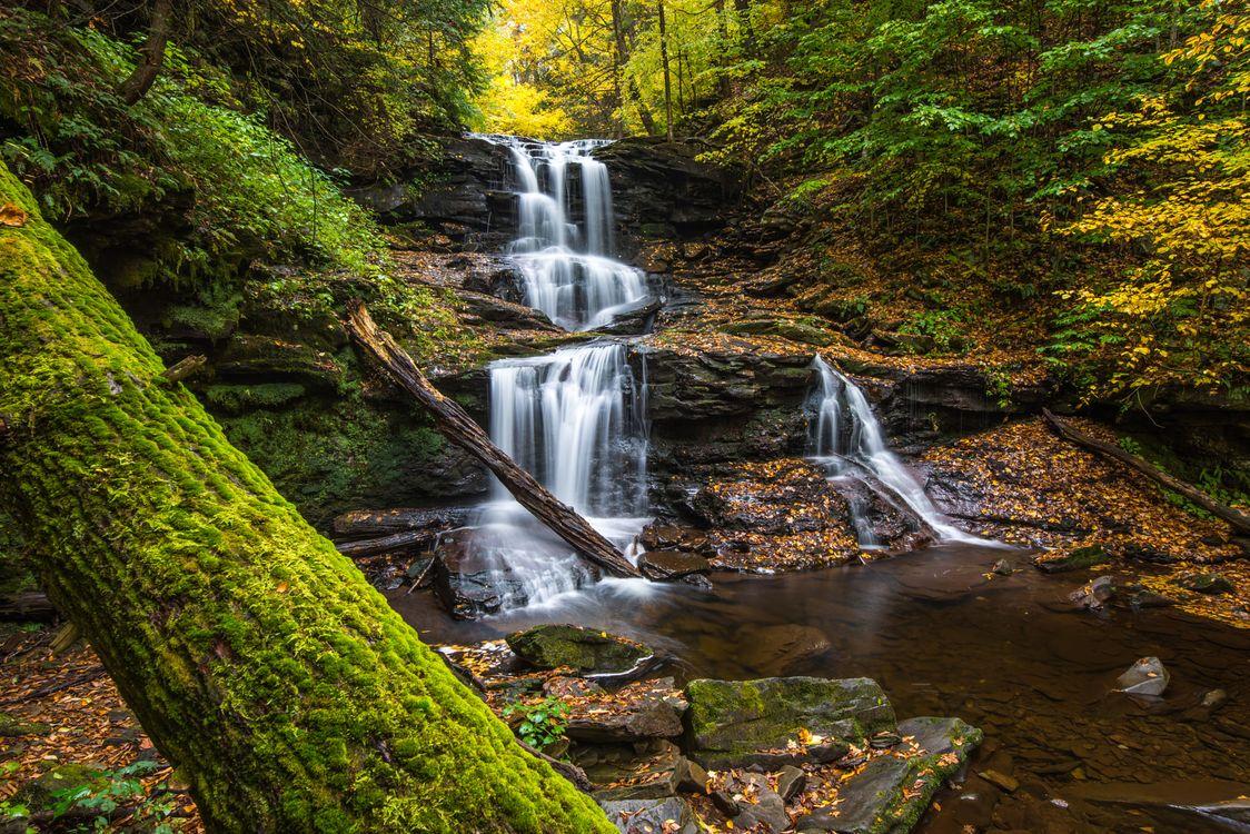 Природа Пенсильвании · бесплатное фото