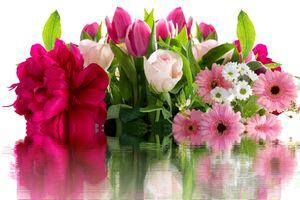 Фото бесплатно красочный, флора, оригинал