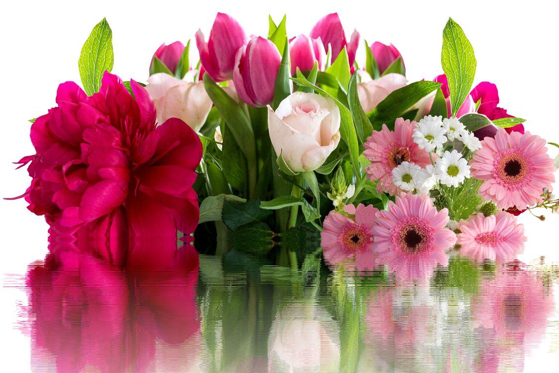 Войне для, цветы спасибо открытка