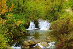Photo free autumn waterfall, forest, trees