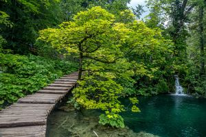 Фото бесплатно Плитвицкие озера, Национальный парк Плитвицкие озера, Plitvice Lakes national park, Croatia, Хорватия, водопад, деревья, пейзаж