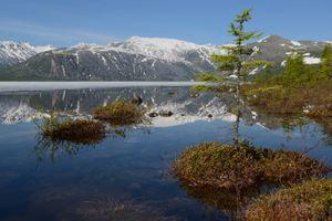 В зеркале воды · бесплатное фото