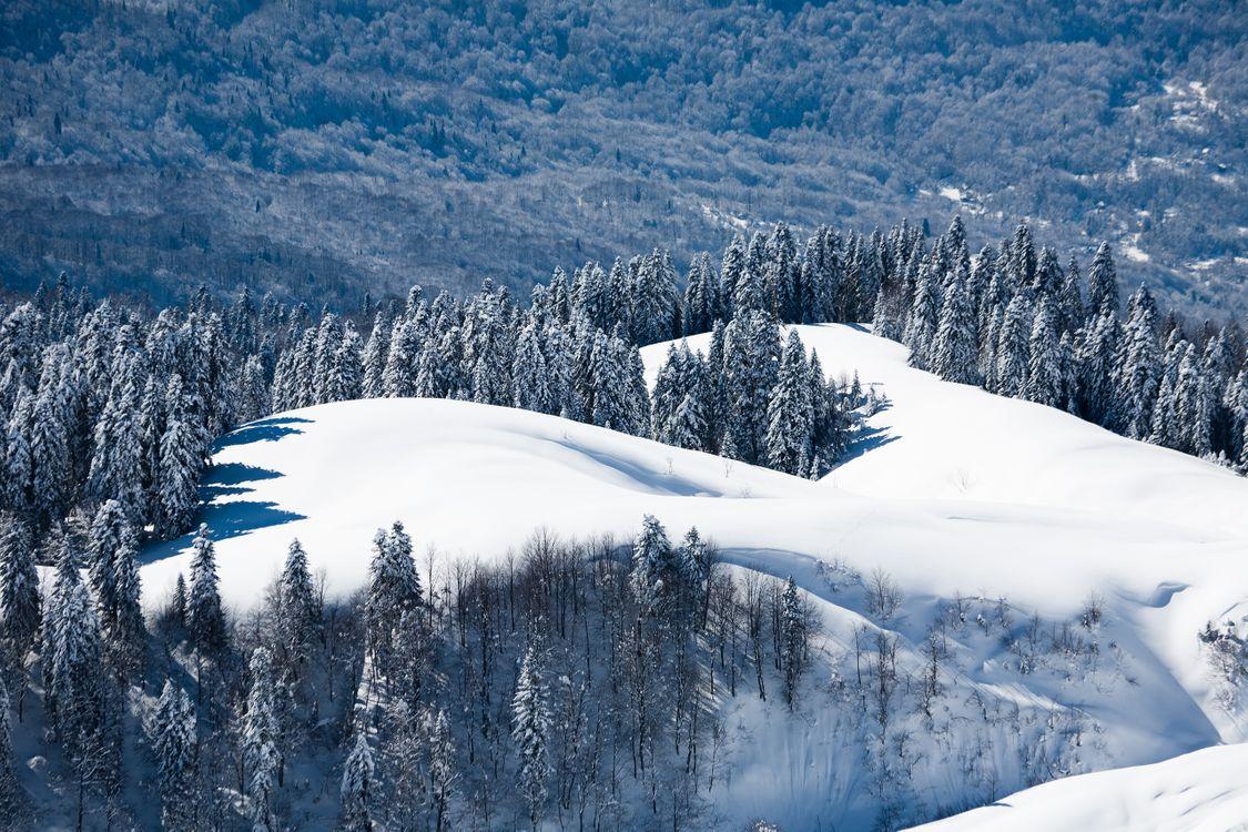 Фото бесплатно времена года, зима, природа - на рабочий стол