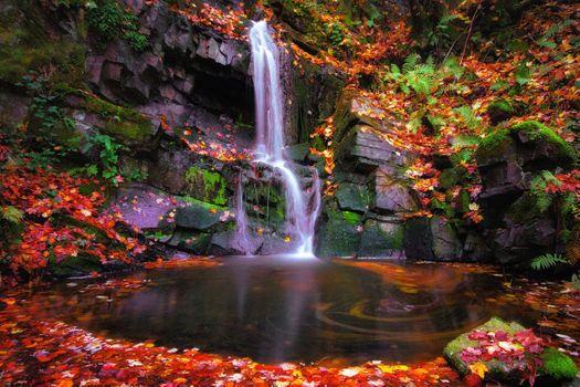 Photo free autumn waterfall, rocks, autumn leaves