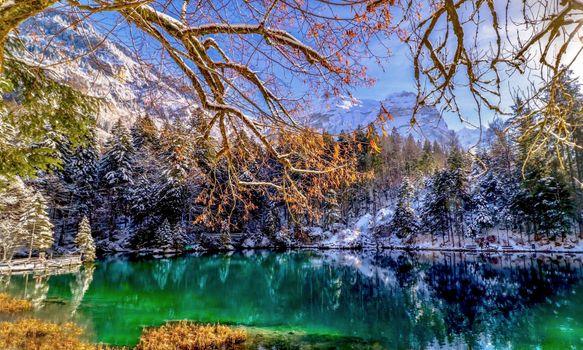 Бесплатные фото Blausee,Бернские Альпы,Bergsee,озеро,горы,осень,зима,деревья,природа,пейзаж