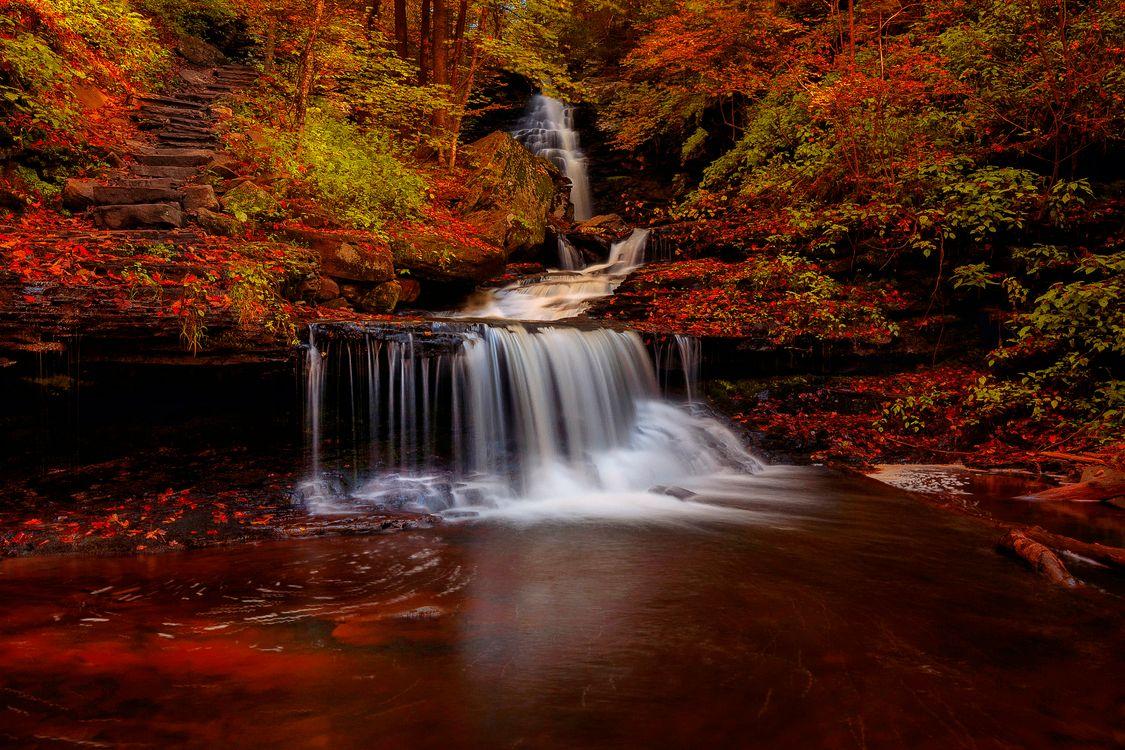 Осенний водопад в красочном лесу · бесплатное фото