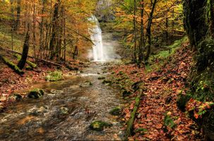 Фото бесплатно осень, лес, природа, река, деревья, водопад