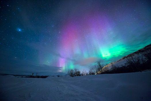Бесплатные фото пространство,звезда,ночь,обои,облако,снег,20180418,лес,ночное небо,отпуск,путешествия,природа