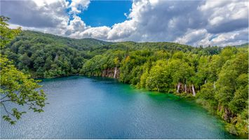 Фото бесплатно Хорватия, деревья, река