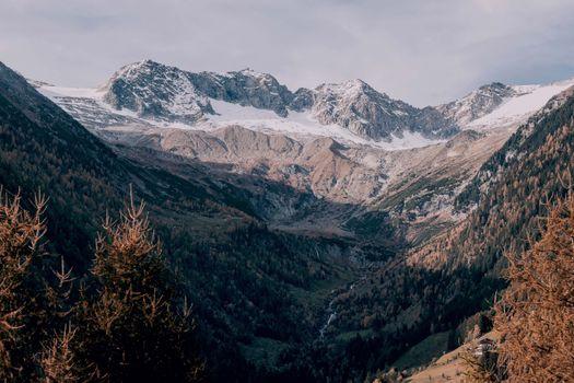 Фото бесплатно деревья, горы, снег на горах